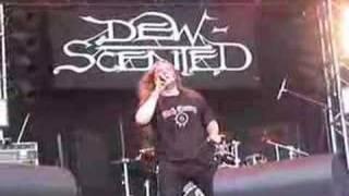 Dew-Scented # Bitter Conflict - Wacken
