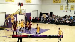 Ivica zubac posts 20 points & 10 rebounds vs. the charge, 1/14/2017