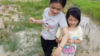 Download Video Mancing Ikan Gabus Rawa MP3 3GP MP4
