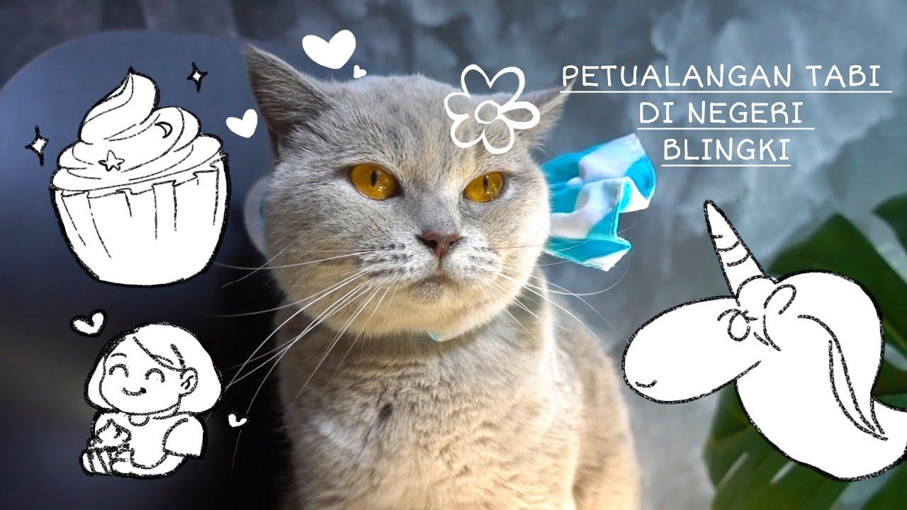 Petualangan Di Negeri Blingki - Dongeng Bahasa Indonesia - Cia Cat Diary