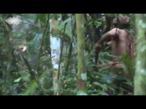 FUNAI DIVULGA VÍDEO DE ÚLTIMO ÍNDIO DE SUA TRIBO