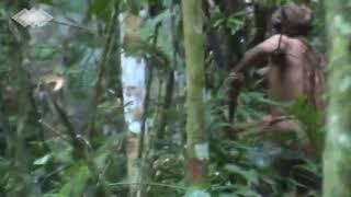 بالفيديو.. طرزان حقيقي يظهر في البرازيل