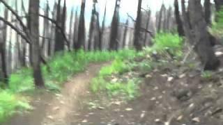 Mt Baldy Downhill Ride