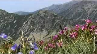 Parcul National Retezat - Acolo unde tacerea vorbeste