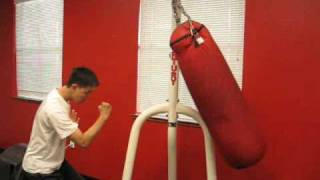 Effect of the Wing Chun Punch with Xingyi principles