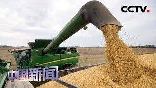 [中国新闻] 中美经贸摩擦 美农业部长:美农民成受害者之一 | CCTV中文国际