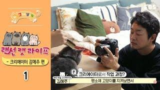 고양이를 부탁해 - 랜선 캣 라이프 - 크리에이터 김메주 편_#001