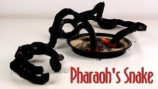 Amazing Black Pharaoh's Snake - 3 Pharaoh's Serpent Science Experiment