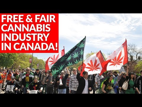 Free and Fair Cannabis Industry in Canada - Fight for Freedom!