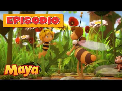 HONEY BEES 96fps IN 4K (ULTRA HD) de YouTube · Duración:  3 minutos 48 segundos  · Más de 2.797.000 vistas · cargado el 18.09.2012 · cargado por Jacob + Katie Schwarz