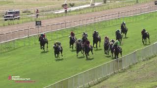 Vidéo de la course PMU HIPPODROMOA TURF HANDICAP
