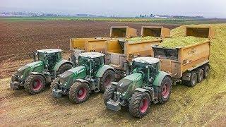 FENDT Traktoren | Lohnunternehmen Jumpers | Claas Jaguar 980 | Maishäckseln