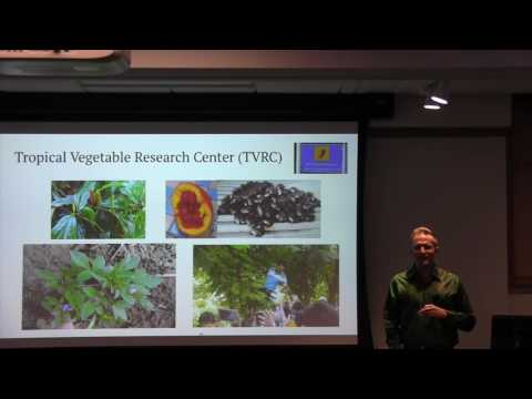 James Keach: Impatiens and Vegetables in Thailand