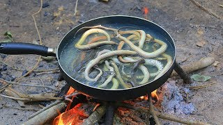 Fried Water Snake Recipe Eating Delicious