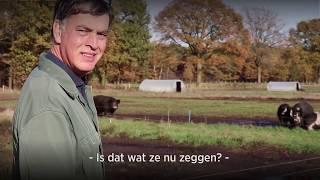 Varkensfluisteraar Kees Scheepens wil de veeindustrie veranderen door meer met varkens te praten.