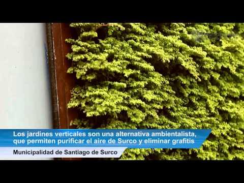 Paredes ecol gicas purifican el aire de surco for Jardines verticales lima
