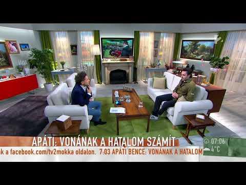 Apáti Bence Vona Gáborról: ˝Ezt az embert nem lehet komolyan venni…˝ - tv2.hu/mokka