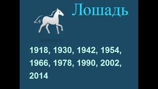 Год лошади, гороскоп составленный психологом Натальей Кучеренко.