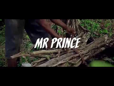 Mr  Prince Nana Baah-ADOM BI ft  Adowa  smart  and waakye (Official video)