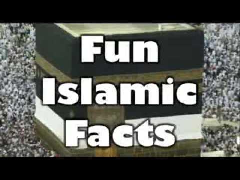 Why Do Muslims & Islam Hate Dogs: (David Wood)