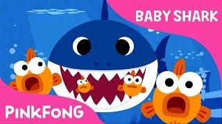 go-babysharkchallenge-lagu-asil-pinkfong-bayi-yu-dari-babysharkchallenge-pinkfong