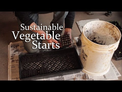 Sustainable Vegetable Starts: Homemade soil mix and pots