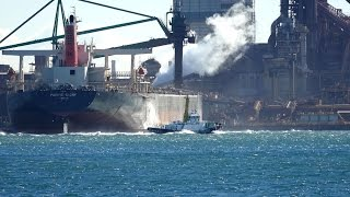 """Ore Carrier """"PACIFIC GLORY"""" NGO F11"""