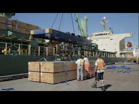 Economics of Shipping