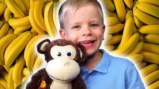 Monkey Banana Dance    Baby Monkey Animals   Dance Along   Dima Family Show