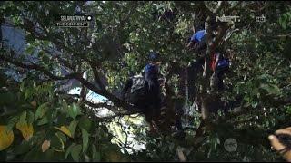 Suporter Arema Nekat Nangkring Di Atas Pohon Nonton Pertandingan Dari Kejauhan - 86