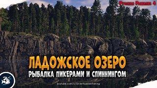 Ладожское озеро • Рыбалка донкой и спиннингом • Русская Рыбалка 4