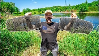 STOCKING My POND with Fish Caught in MINNOW TRAPS!!!
