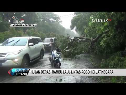 Hujan dan Angin Kencang Sebabkan Pohon Tumbang Mp3