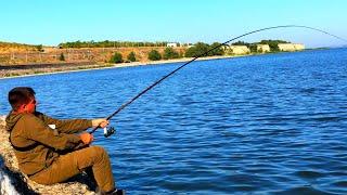 ТОЛЬКО ЗАКИНУ ПОПЛАВОК И ПОТЯНУЛА УДОЧКУ В ВОДУ рыбалка на поплавок 2020