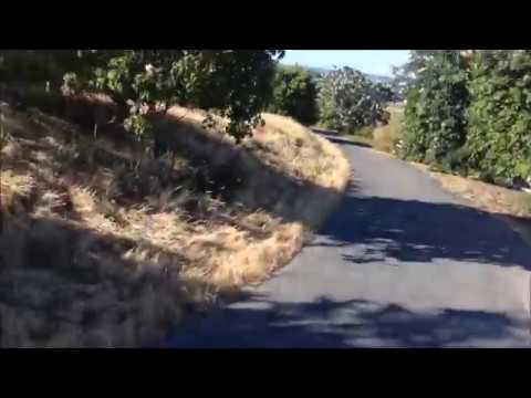 Bicycling: Starts at Facebook and back to Menlo City; Silicon Valley, California