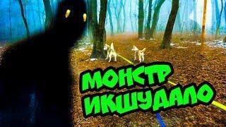 МОНСТР В ТУМАНЕ! (ВЛОГ УЖАСОВ) Хаски Бублик. Говорящая собака