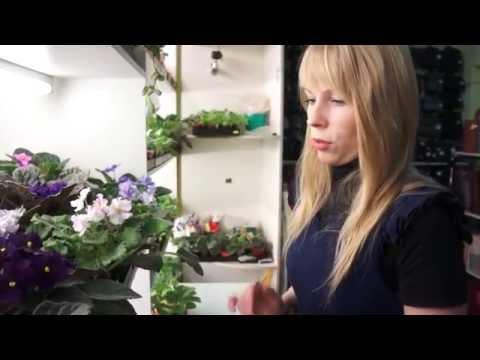 Сделай сад: девушка и цветы