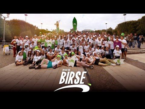 BRICE DE BIRSE - Arts et Métiers