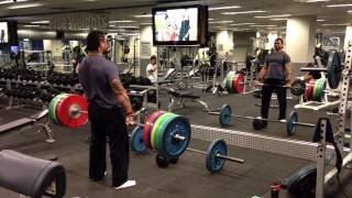Krayze Dave Heavyweight Boxer Training Weights
