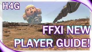 FFXI Guide for New Players!