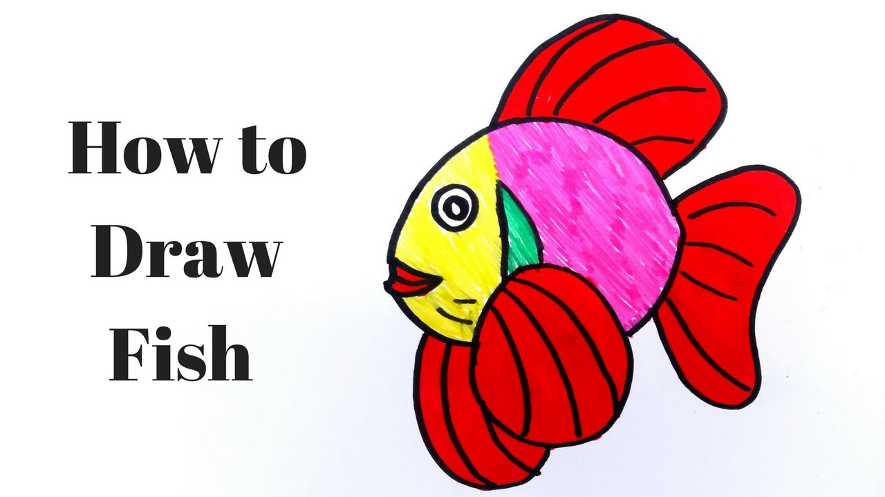 How to Draw Fish & Color for Kids Learning Videos for Children Fish ...