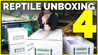 Unboxing 16 Pet Reptiles! Leopard Geckos, Ball Pythons & More New Animals
