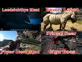 Ark: Patch 256 - Leedsichthys, Equus Saddle Lasso, Flyer Nerf Mod & Primal Fear Giga Boss
