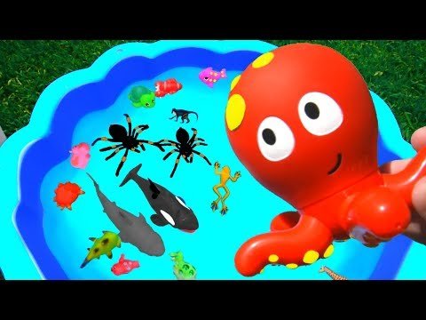 Learn Colors With Animals and Sharks in Blue Water Tub | Toys For Kids Child