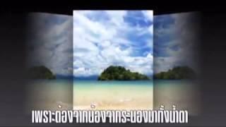 ล่องใต้ : ก๊อต จักรพันธ์ ครบุรีธีรโชติ