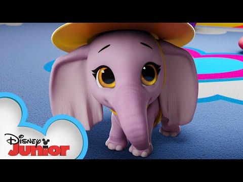 Вопрос: Чем может удивить слон?