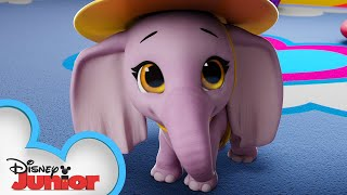 Elephant in the Room 🐘 | T.O.T.S. | Disney Junior