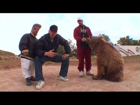 Kaïra Shopping - le grizzly de Ouf
