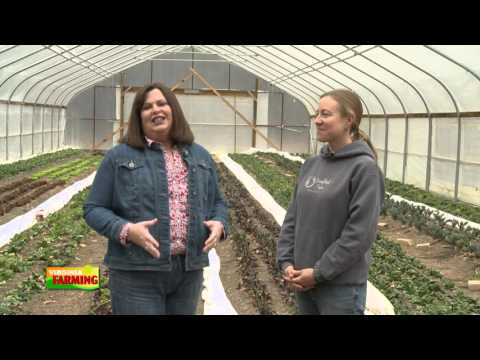 Virginia Farming: Broadfork Farm and Community Supported Agriculture
