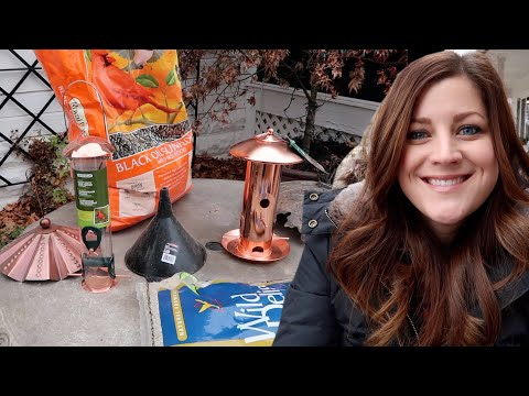 Setting Up Bird Feeders & Planting Bulbs In Containers! 🐦🌿💚// Garden Answer